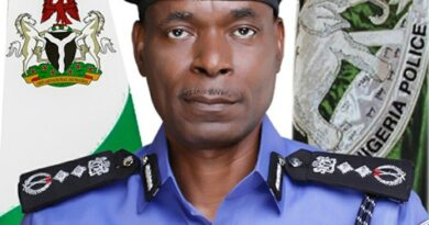 IGP Adamu Mohammed Retirement: 3 DIGS, 10 AIGS to go 3