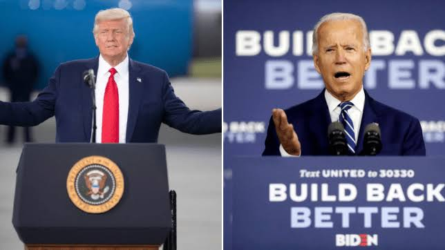 Primate Ayodele Tells Joe Biden What To Do To Unseat Donald Trump In Election 1
