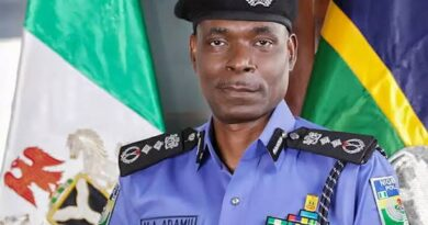 #EndSARS: Police To Promote Officers Killed, Injured During Recent Rampage — IGP 4