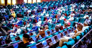BREAKING: Buhari Absent as Plenary Commences in House of Reps 3