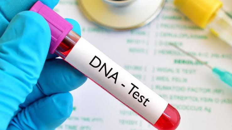 DNA Test: Don't Do It. Here Is Why 1