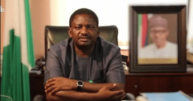 Troops Killed 2,403 Terrorists, Bandits, Kidnappers In 9 Months – Femi Adesina 2