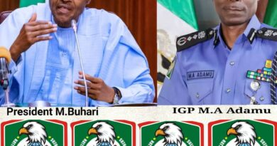 NAOSNP Frowns at Rising Cases of Insecurities in Nigeria 10