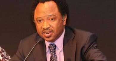 Shehu Sani Advises Tinubu To Learn From Abiola's Travails 5