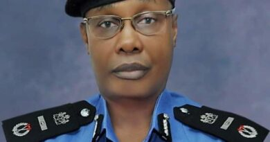 Existing Tinted Car Permits, Spy Number Plates Remain Valid – IGP 4